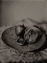 Pomegranate - Ted Preuss